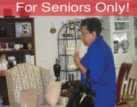 For Seniors Only! :  Why Consignment Shops  are Good for the Senior Brain!