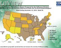 Hospitals restrict visitors as flu precaution