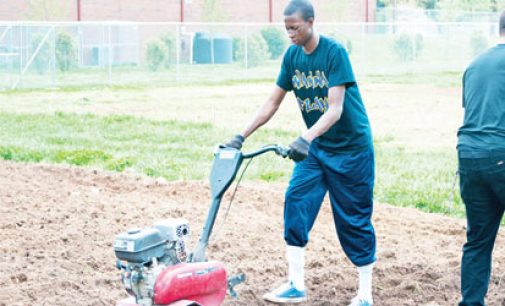 Grant to strengthen community garden program