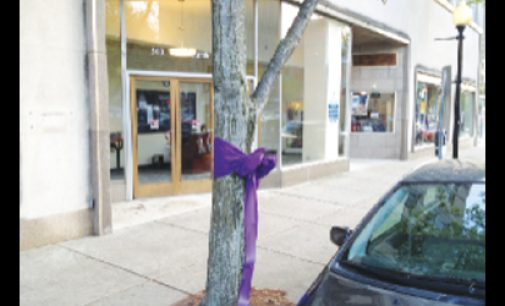 Anti-obesity effort paints the town purple