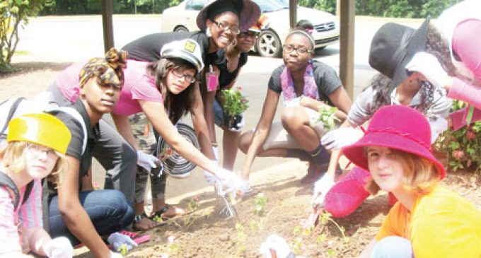 Students get a little of everything in summer program