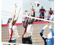 WSSU volleyball standouts make pre-season team