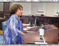 Public comments on city budget; New IDR initiative pleads for funding