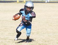 Mity Mite champs fall as they go for state title