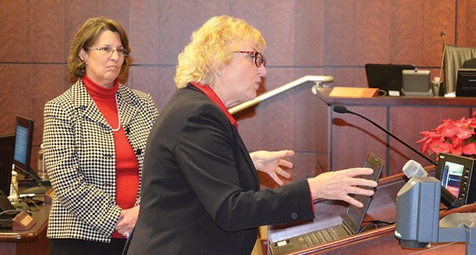 Firm presents consolidation ideas to county council