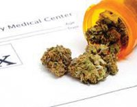 Editorial: Cannabis should be legalized for medical use