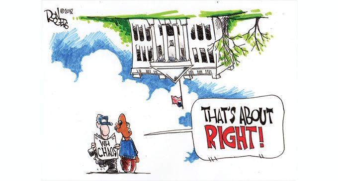 Editorial Cartoon: Upside Down