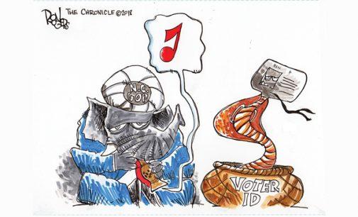 Editorial Cartoon: Voter ID Returns