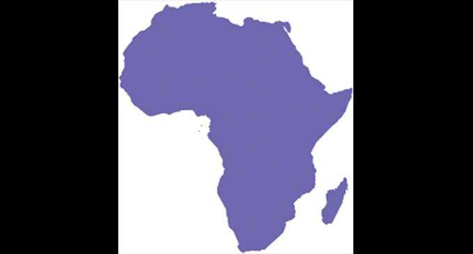 Commentary: Africa seeks investment from diaspora