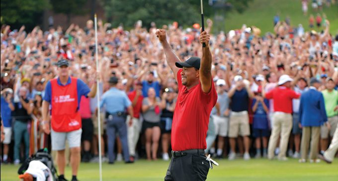 Tiger shocks the world with win