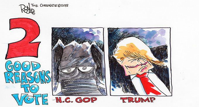 Editorial Cartoon: Reason to vote